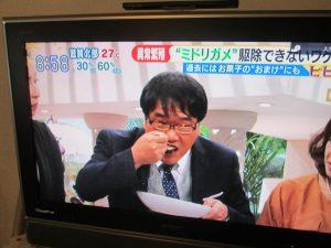 2016年10月3日 TBSテレビ 白熱ライブビビットで赤耳カレースタジオで!